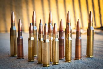 Koncesja na obrót bronią i amunicją w Gdyni